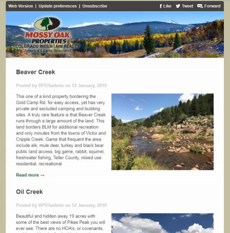 Mossy Oak Properties Colorado Mountain Realty Email Newsletter
