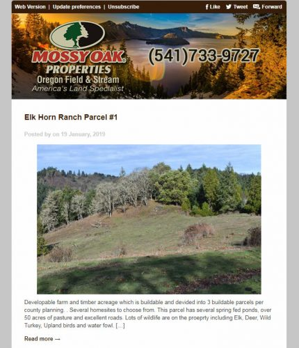 Mossy Oak Properties Oregon Field & Stream Email Newsletter