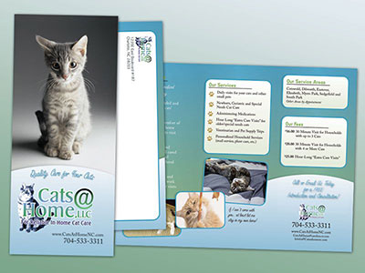 Cats@Home Trifold Brochure