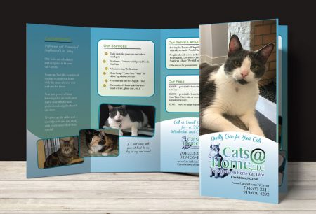 Cats @ Home Trifold Brochure Redesign