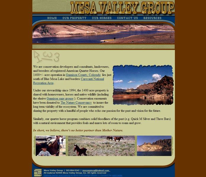 Mesa Valley Group Website