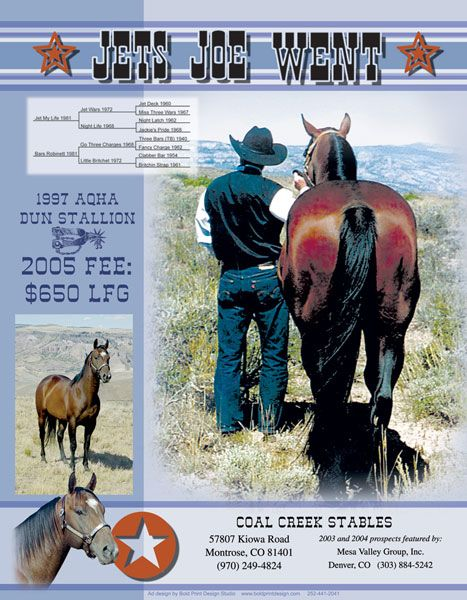 """Mesa Valley Group """"Joe Stallion"""" Ad"""