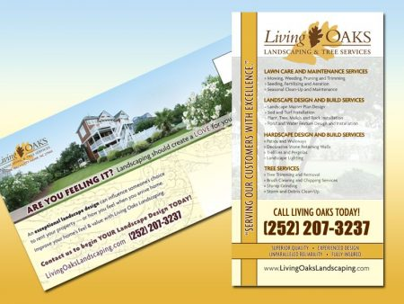 Living Oaks Postcard